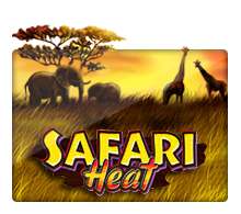 เกมJOKER Safari Heat
